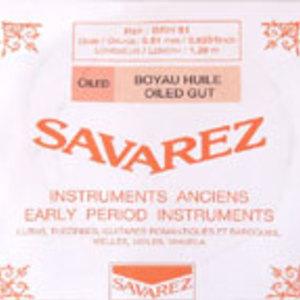 Savarezth cropped