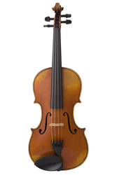 Italian Master Violin by Stentor Music