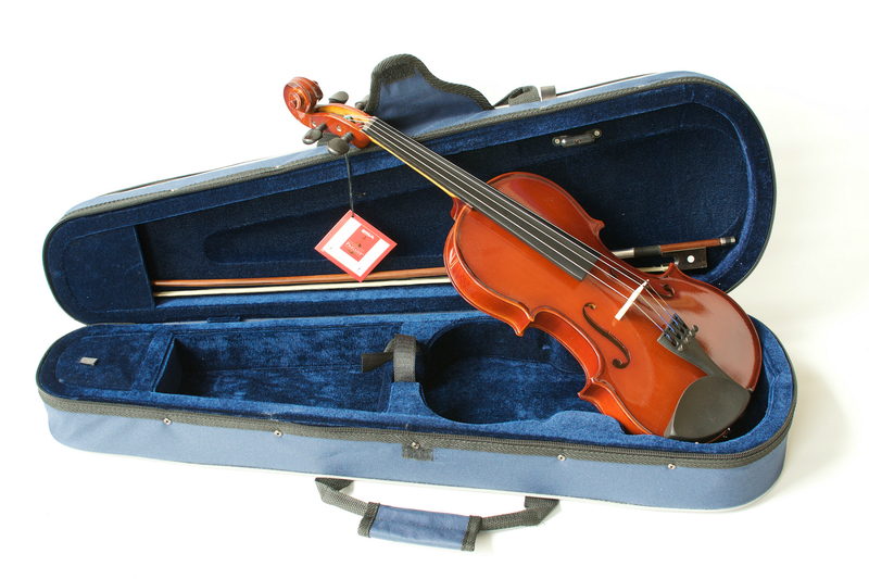 Image of The Primavera 100 Student Violin Outfit with D'Addario Prelude Strings