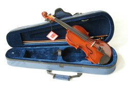 The Primavera 100 Student Violin Outfit with D'Addario Prelude Strings