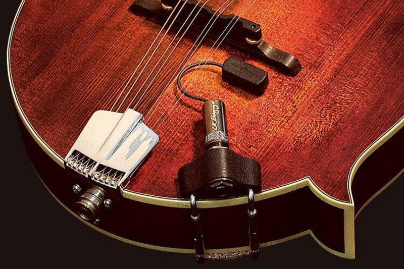 Image of L.R Baggs Radius Mandolin Pickup